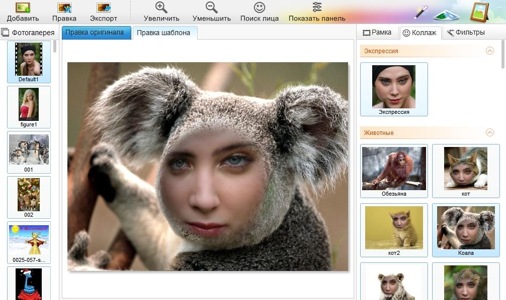 еще нескольких программы фото приколы на русском сравнению пышными соцветиями